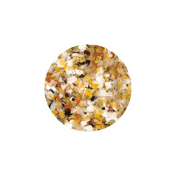 [B74] プリムドール キャラメルチョコナッツ 1