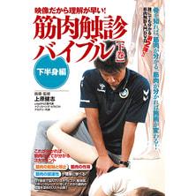 【DVD】映像で見るから理解が早い!【筋肉触診バイブル】~下巻 下半身編~