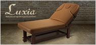 Laxia アームレスト可動式高級木製リクライニングベッド「FORTE」