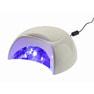 Raygel 30W LEDライト 2