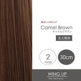 2-camel-brown.jpg